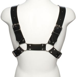 Arreio Anteros Harness Dominatrix