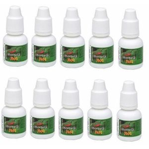 Kit 10 Unid. Gotas Excitantes Hortelã Hot 8ml Chillies