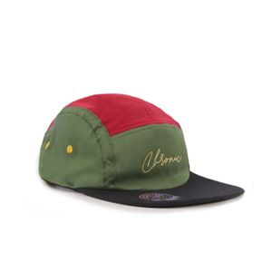 CHRONIC 019/347 FIVE PANEL